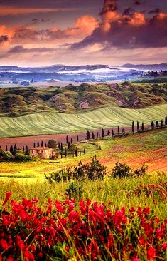Tuscany in Spring-Is Italy