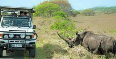 Imfolozi-Hluhluwe è una splendida riserva nel Sud Africa. Uno stupendo scenario naturalistico per safari tra colline verdeggianti, foreste e fiumi