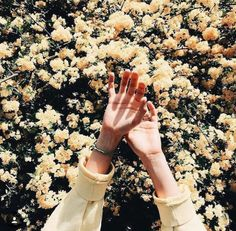 Image discovered by Katerina. Find images and videos about aesthetic, flowers and yellow on We Heart It - the app to get lost in what you love. Spring Aesthetic, Flower Aesthetic, Aesthetic Photo, Aesthetic Pictures, Aesthetic Yellow, Aesthetic Collage, Aesthetic Drawings, Aesthetic Colors, Aesthetic Grunge
