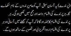 Urdu birds intro