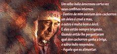 Saladinha Brasileira: Pensamento Indígena