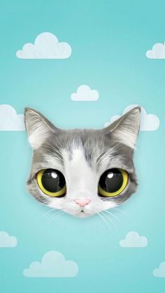 cat, wallpaper, and cute resmi
