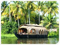 South India, state of Kerela backwater boat cruise (we did 2 nights..it was amazing)