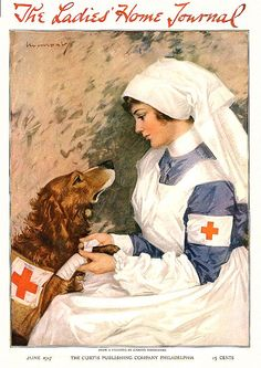 Vintage World War One Nurse with Golden Retriever Dog, from a 1917 war poster. Nurse is bandaging a brave rescue dog. This makes a perfect gift for nurses, animal lovers, history lovers and military memorabilia collectors. Ww1 Posters, Nurse Art, Vintage Nurse, Vintage Dog, Medical Art, Medical History, Dogs Golden Retriever, Retriever Dog, Golden Retrievers