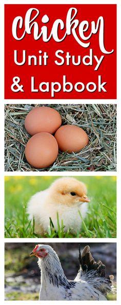 Chicken Unit Study & Lapbook from Homeschool Share