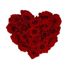 Rosen die nicht verwelken Geschenkbox Roses For Valentines Day, Real Flowers, Mother's Day