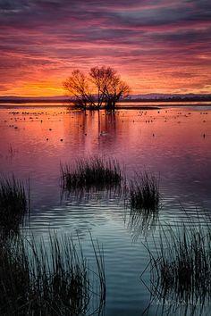 Incredible sunset ~ National Wildlife Refuge, California