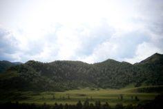 горы, Алтай, природа