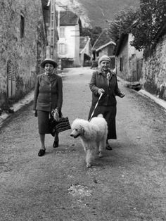 """poodle vintage picture: Alice B. Toklas and Author Gertrude Stein, Walking Poodle """"Basket"""" During…"""