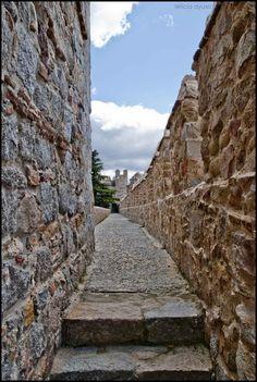 La Muralla de Ávila es una cerca militar románica que rodea el casco antiguo de la ciudad de Ávila, de la provincia homónima, de la comunidad autónoma de Castilla y León, en España.