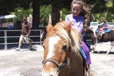 #LemosFarm in Half Moon Bay. Ponies, train rides, hay rides, bounce house and goats!