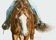 Colored Pencil Portrait of AQHA Western by BrucknerCowboyArt, $45.00