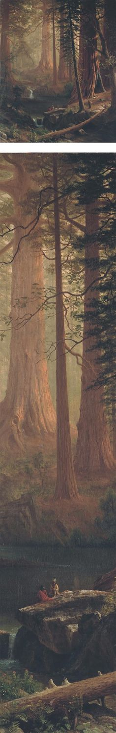 Giant Redwood Trees of California, Albert Bierstadt