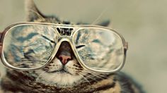 awesome hipster wallpaper 36 HD Wallpapers