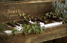 natureʻs music