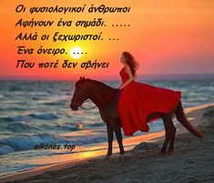 True Words, Good Night, Greek, Heaven, Horses, Nature, Movie Posters, Animals, Life