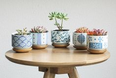 Set of 5 Japanese Style Ceramic Planter Pot with Bamboo Tray Home & Office Decorative Pots Terrarium Pots Succulent Plant Pots for Gift Japanese Home Decor, Asian Home Decor, Japanese Style, Herb Garden Planter, Planter Pots, Vertical Planter, Planter Ideas, Succulent Pots, Planting Succulents