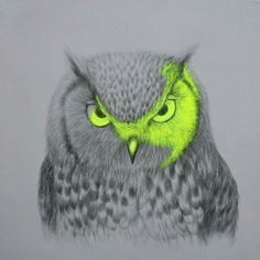 Owl art by Louise McNaught