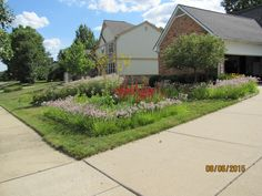 Rain Garden, Sidewalk, Gardens, Building, Pictures, Walkway, Photos, Buildings, Garden