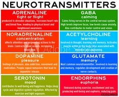 Neurotransmitters are chemicals that help in transmitting signals across a synapse. Different neurotransmitters are associated with different functions. Knowledge about these helps us to treat various neurological conditions by either stimulating or. Mental Health Nursing, Mental And Emotional Health, Brain Facts, Psychiatric Nursing, Nursing School Notes, Pharmacology Nursing, Brain Science, Anatomy And Physiology, Psychiatry