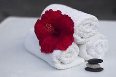 Best Nuru massage in Delhi,Female to male body to body massage spa in Delhi Summer Rolls Vegan, Secret Deodorant, Cheek Fat, Hot Tub Accessories, Garland Tx, Nuru Massage, Body To Body, Massage Center, Hibiscus