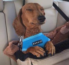 Relaxing drive