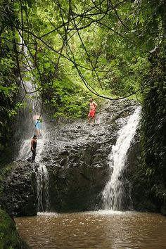 Maunawili Falls, Oahu, Hawaii, one of my favorite places, I jumped off this!