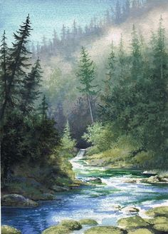 Forest and Stream in Oregon