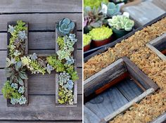 living wall planters DIY ideas wooden letters succulents vertical gardens living wall planters DIY i