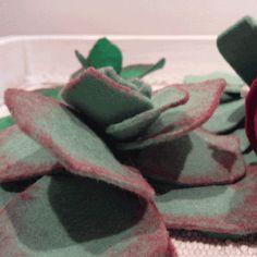 "Detail.""Cactus"" (Gymnocalycium japan rojo) by Tacirupeca // Detalle.""Cactus"" (Gymnocalycium japan rojo) de Tacirupeca"