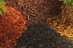 Using Mulch. Using mulch is a great way to save water and control weeds in your garden. There are two categories of mulch, organic and inorganic. The best..
