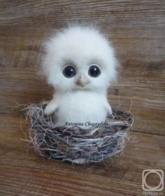 Cute Animals Hd only Domestic Animals Cute Pictures + Cute Baby Animals Live Wallpaper Needle Felted Animals, Felt Animals, Needle Felting, Animals And Pets, So Cute Baby, Cute Babies, Too Cute, Cute Little Animals, Cute Funny Animals
