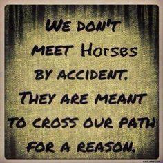❤ true