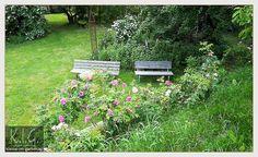 Garten R in K - ein rosengarten teil1: die gartenfotos | 2014-05