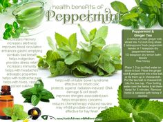 Health Benefits of Peppermint