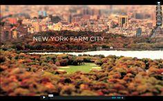 Be inspired by Urban Farming in New York. Beautifully filmed as well with tilt shift technique. Initiative from Nourishing USA, Brooklyn Grange Farm en Bobo. #urbanfarming #NYC