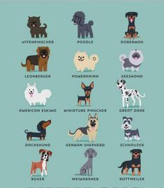 """""""Los perros del mundo""""   Perros de Alemania"""