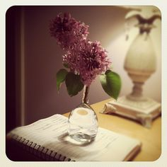 Light Writing and Lilacs.