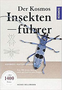 Was krabbelt denn da? Kindle App, Books To Read Online, Movies And Tv Shows, Audio Books, Things To Sell, Insects, Amphibians, Animals, Field Guide