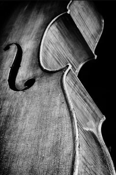 As a cellist, I enjoy this photo because it goes deeper than the sound the instrument makes to the actual physical beauty of the instrument itself.