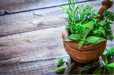 Natural Herbal Home remedies For health Issues/Problems.Cure Your Health Problems with Natural Ingredients.Remedies that already used and tested by herbalists and people. Herbal Remedies, Health Remedies, Thyme Tea, Sooth Sore Throat, Troubles Digestifs, La Constipation, Natural Antibiotics, Herbs