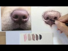 How to paint a dog's black nose - YouTube