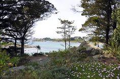 Ile de Batz Le phare de lIle de Batz dans le lointain, vue du jardin exotique Georges Delaselle © LE HENAFF PATRICK - mars 2013 | Finistère Bretagne