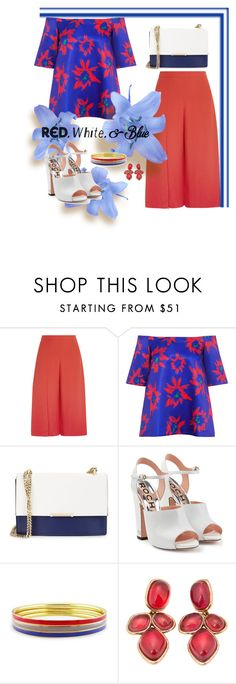 """Untitled #428"" by m-jelic ❤ liked on Polyvore featuring Chalayan, Edit, Ivanka Trump, Rochas, Ice, Oscar de la Renta, redwhiteandblue and july4th"