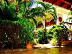 Boutique Hotel in Quepos