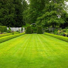 """Brian creates the illusion of a large expanse by tapering the space so it's narrower at the far end of this formal garden. """"The garden is 8 feet narrower at the far end than it is in the foreground, where it measures 20 feet across from boxwood to boxwood,"""" Brian says. The result: a space that appears one-and-a-half times its actual length."""