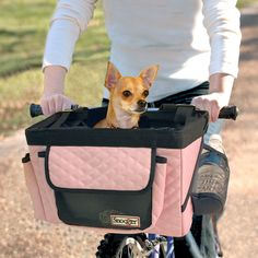 Does this dog look like it's having fun?  Snoozer Pet Bicycle Basket at Allbiketrailers.com.  $55.