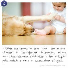 Bebês/cães saudáveis