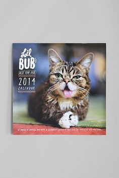 lil bub calendar!