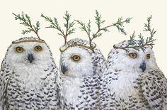 """Vicki Sawyer - Hester & Cook """"Festive Owls""""                                                                                                                                                                                 More"""